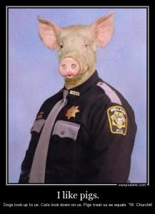 police.pig